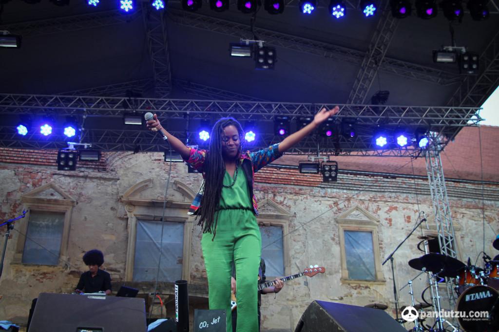 Electric Castle Festival 2014-59