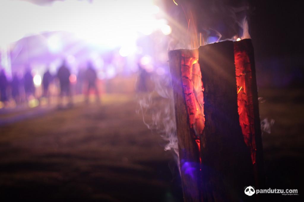 Padina Fest 2014 -37