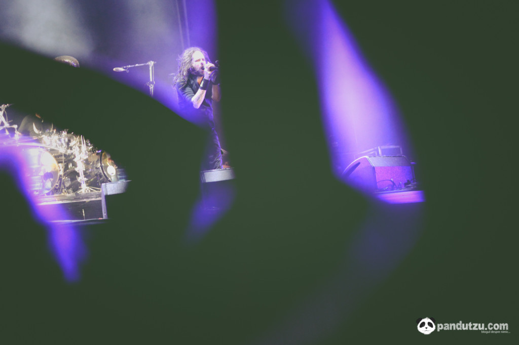 Sziget Festival 2014 (day 3) -100